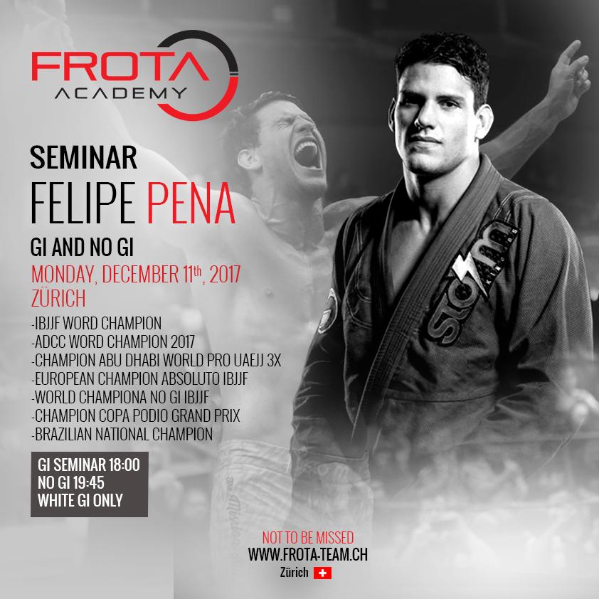 Felipe Pena Seminar, December 11th, 2017